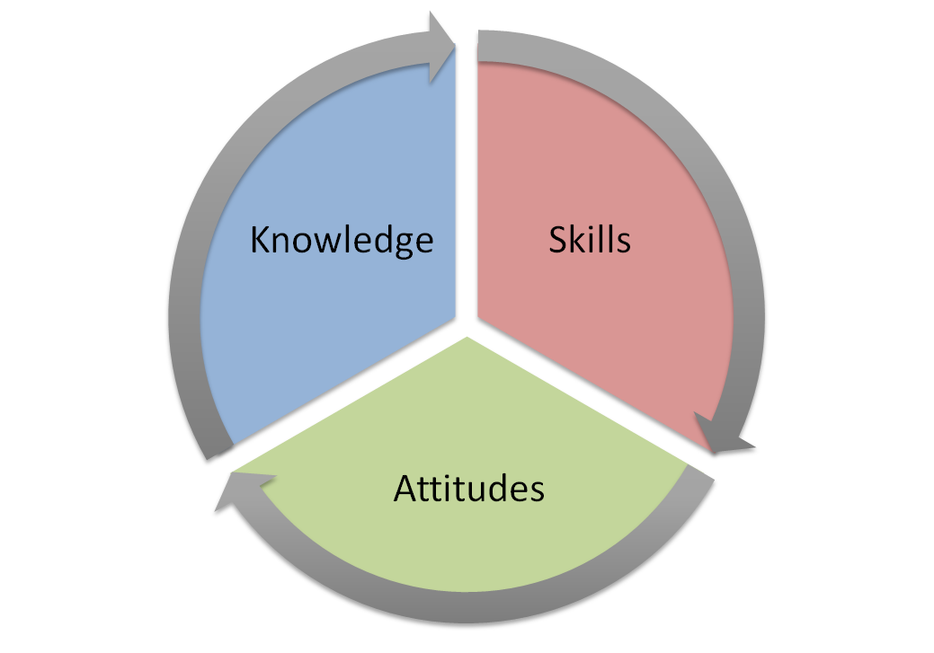 Theory and practice: skills and knowledge of youth work
