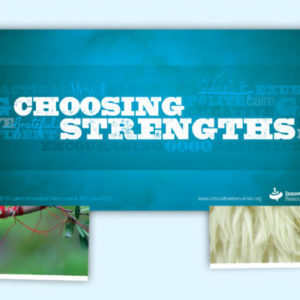 Choosing Strengths